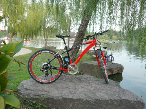 diamond frame electric bike